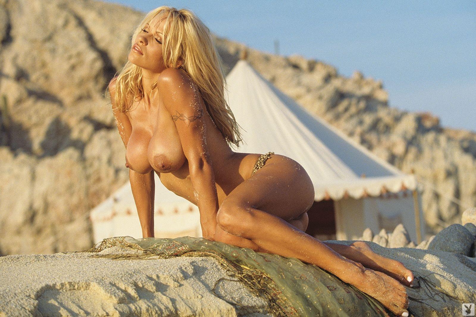 Pamela Anderson Nudes