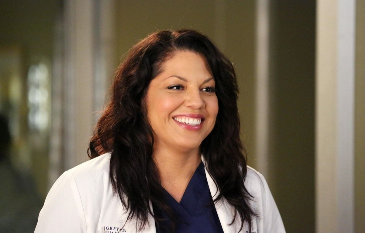 Grey's Anatomy Actress Comes Out As Bisexual